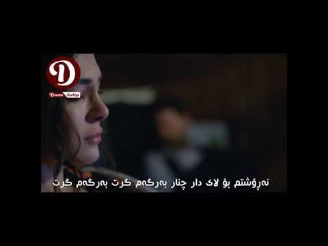 Ebru şahin Gide Gide Bir Söğüde Dayandım Kurdish Subtitle💛✨