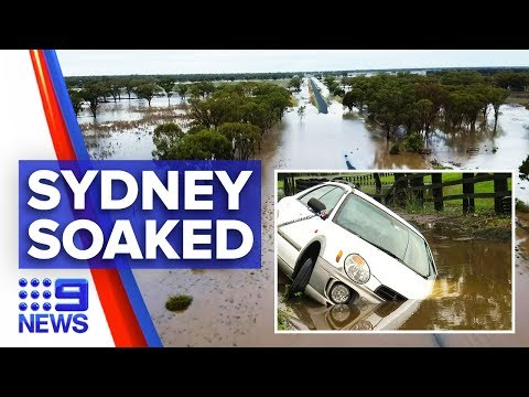 Sydney lashed with torrential rain, floods, winds | Nine News Australia