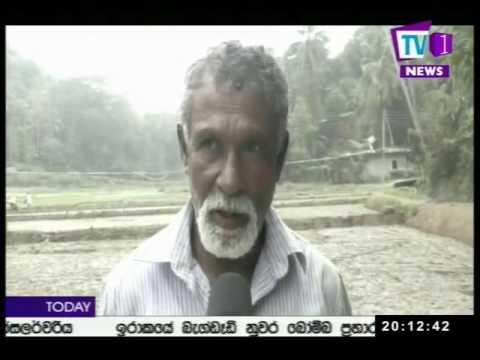 Prime Time News Sinhala TV1 8pm 31st December 2016