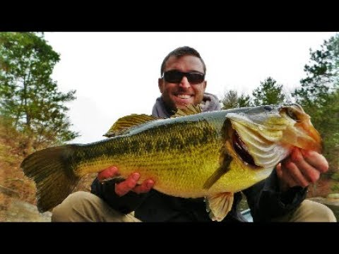 Ontario Provincial Fishing Records & Master Angler Sizes