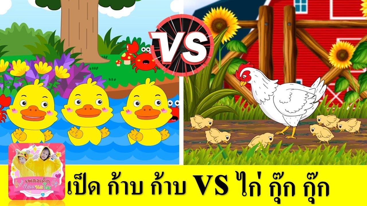 เพลง เป็ด ก้าบ ก้าบ vs ไก่ กุ๊ก กุ๊ก   เรียนรู้เรื่องสัตว์ ปีก   สื่อการเรียนเด็กอนุบาล