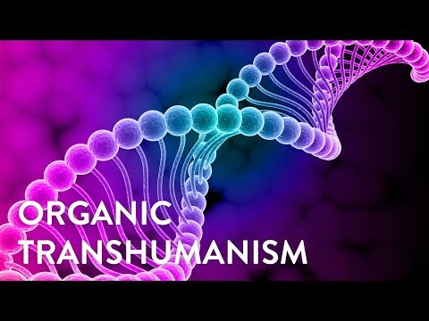 Organic Transhumanism: Hacking The Human Genome To Reach The Next Level In Evolution