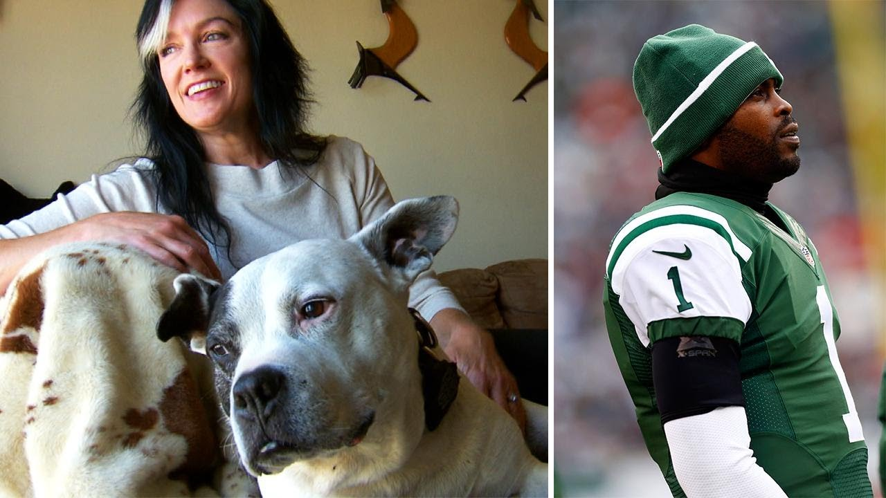Dog Rescued During Michael Vick Scandal Is Now a Therapy Pet