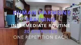 Human Harmony Training - The INTERMEDIATE 20 exercise routine