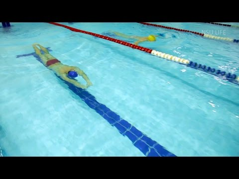 NSU SPORT. Плавание