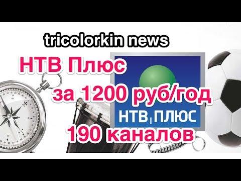 НТВ Плюс, 1200 рублей в год. Дешевле Триколора!