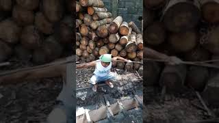 Video atraksi warga PSHT Bojonegoro download MP3, 3GP, MP4, WEBM, AVI, FLV Juli 2018