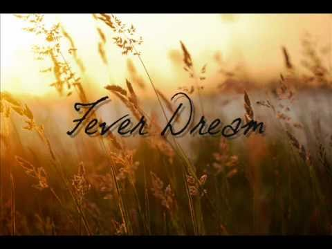 Iron and Wine - Fever Dream with lyrics (Requested)