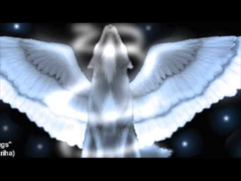 Wolves with Wings - BB You Fight Me - YouTube