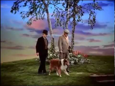 Son of Lassie  The first meeting between June Lockhart and Lassie!