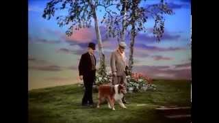 Son Of Lassie - The First Meeting Between June Lockhart And Lassie!