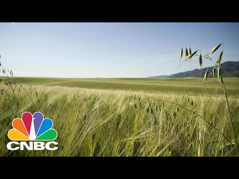 What A Trump Presidency Could Mean For Public Lands | CNBC