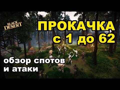 Black Desert (MMORPG - ИГРЫ) - 🏋 Прокачка в BDO с 1 по 62 уровень в 2018 + фарм