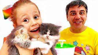 Nastya e história sobre como cuidar de gatinhos