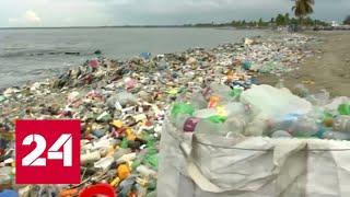 Смотреть видео Борьба с пластиком: когда в России запретят полиэтиленовые пакеты и одноразовую посуду? - Россия 24 онлайн
