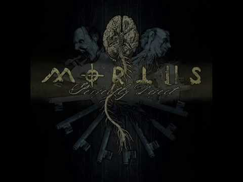 Mortiis  Closer to the End