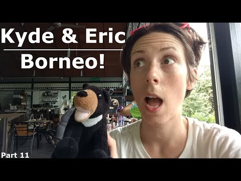 Borneo! | Sun Bears, Orangutans and Tea Plantations!