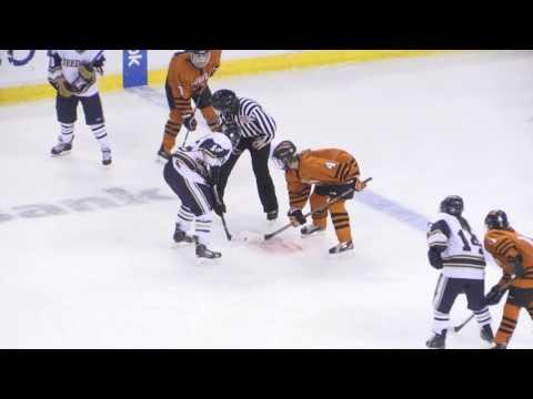 Girls Hockey - Woburn Tanners vs Needham Rockets MIAA D1 Championship