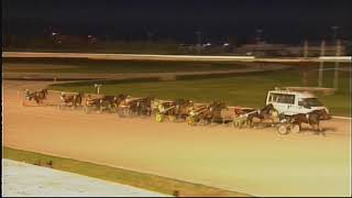 Vidéo de la course PMU PREMI DERBY DELS 4 ANYS