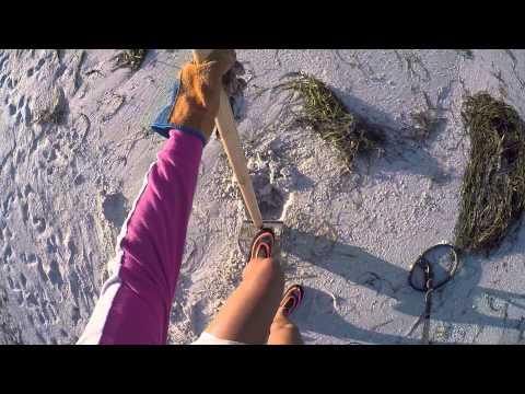 Beach Metal Detecting Hunt - 16 Jan 2016