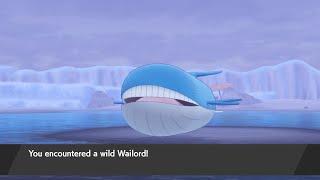 How to Catch Wailord - Pokémon Sword & Shield