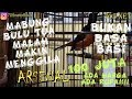 Murai Arsenal  Juta Mental Gaya Main Durasi Isian Volume Toppp  Mp3 - Mp4 Download