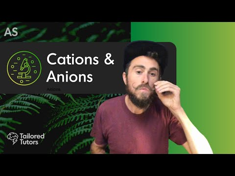 Cations & Anions | A Level Biology Tutorial | OCR thumbnail