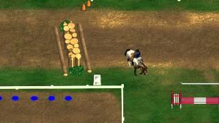 Horse Illustrated: Championship Season