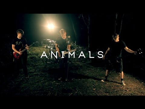 Dear Agony - Animals (Official Music Video)