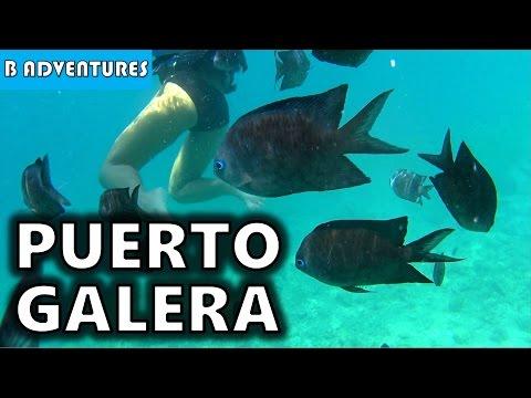 Coral Garden Puerto Galera, Philippines S4, Vlog 26