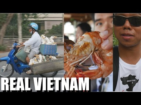 The Best Vietnam Tour Ever: MEKONG DELTA FOR A DAY. daily vlog #16