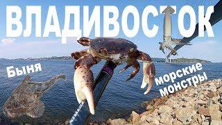 Рыбалка на спиннинг во Владивостоке. Морские монстры.