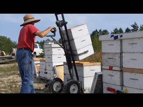 Hive Lifter Product Field Video - Bee Breeding Centre