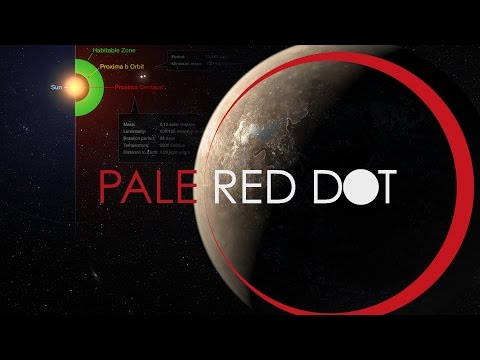 Closest Habitable Planet to Earth Found | Pale Red Dot's Proxima b | What the Physics