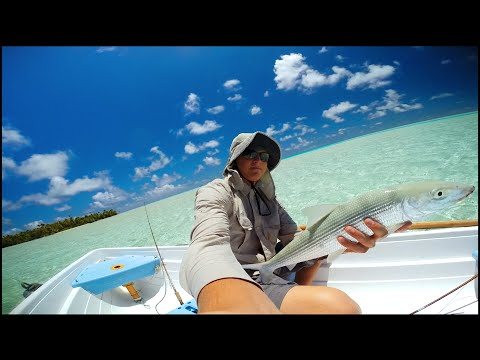 Fly Fishing Bonefish Fakarava Atoll Tahiti 10/ 10/ 2014