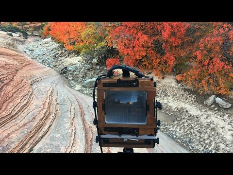 Battling Wind and Searching for Compositions | Large Format Landscape Photography in Zion