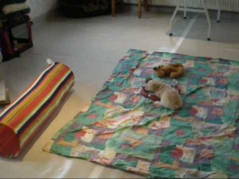 wildes wohnzimmer.wmv - youtube