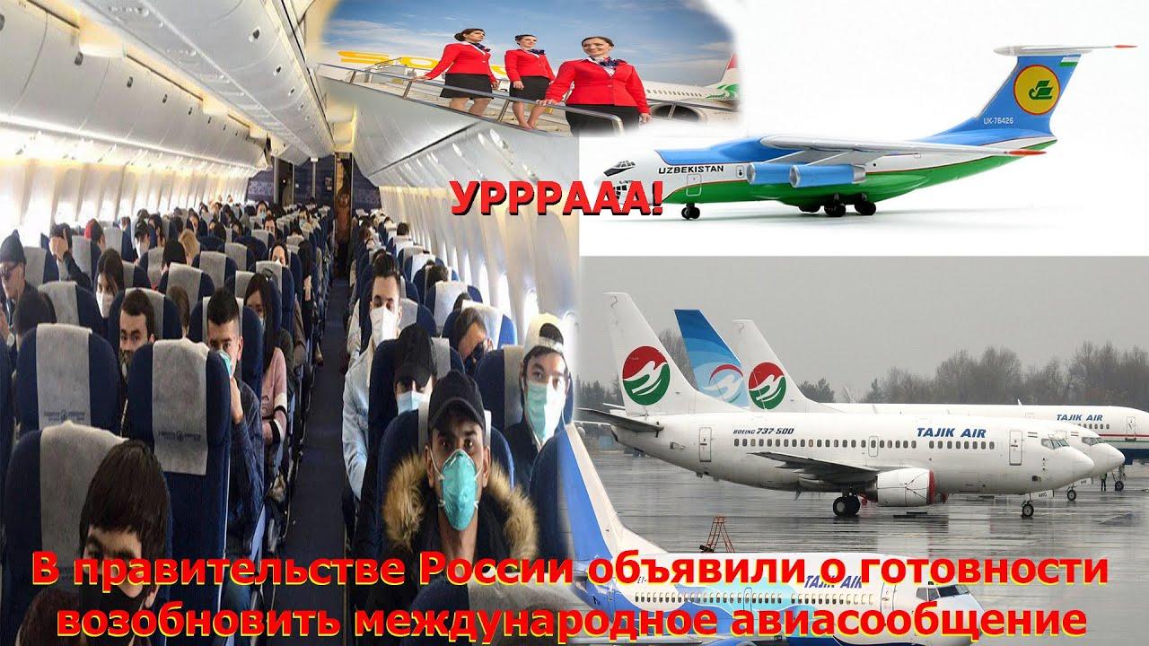 УРА! Первые авиарейсы могут открыться из России в Таджикистан, Узбекистан и СНГ