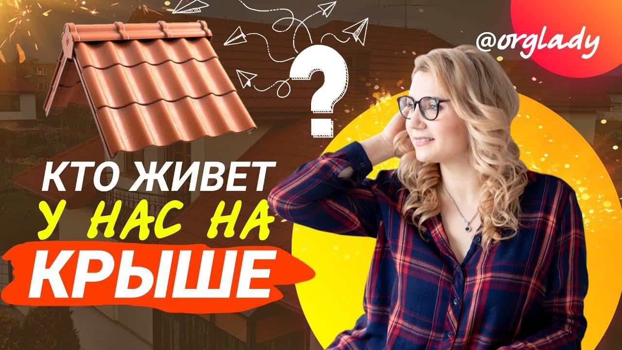VLOG / стираем КОВРЫ / СЮРПРИЗ на крыше