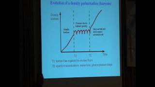 Cosmology on the Beach - Carlos Frenk: Lecture 1