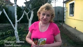 видео Настурция