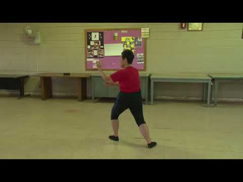 How to Do Cloud Hands After Part Horse's Mane everydaytaichi lucy Honolulu Hawaii