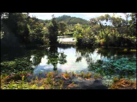 NEW ZEALAND - Memories of Paradise