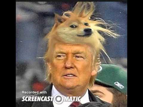 Doge meme painting - photo#24