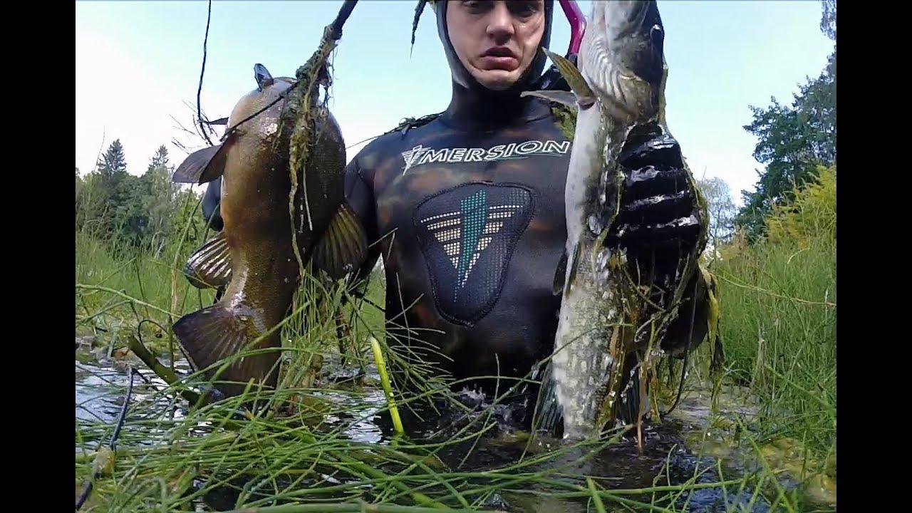 подводная охота #5 озеро щука, линь, окунь