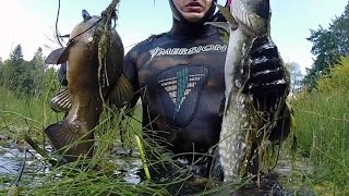 подводная охота #5 озеро щука, линь, окунь(Подводная охота на озере, с очень прозрачной водой. На этот раз результативно... Instagram Мир Охотника: http://www.insta..., 2014-07-17T11:58:59.000Z)