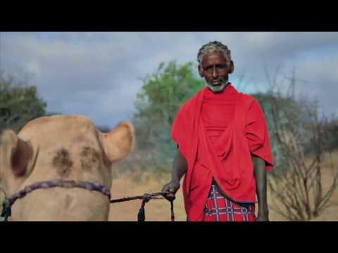 SOMALI CUSHITIC CULTURE