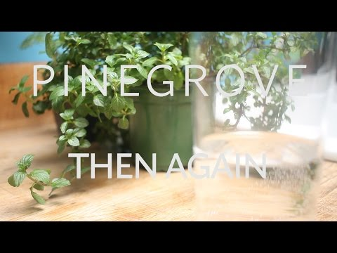 The Key Presents: Pinegrove -  Then Again