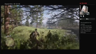 Red Dead Redemption 2 Online with friends