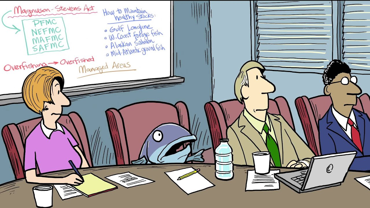 What Is U S Fisheries Management A Cartoon Crash Course Youtube